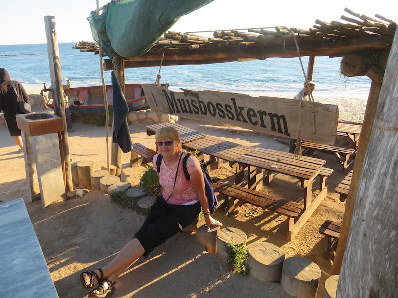 Muisbosskerm near Lambert's Bay