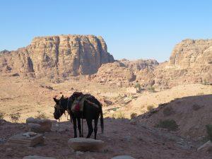 Uitzicht in Petra